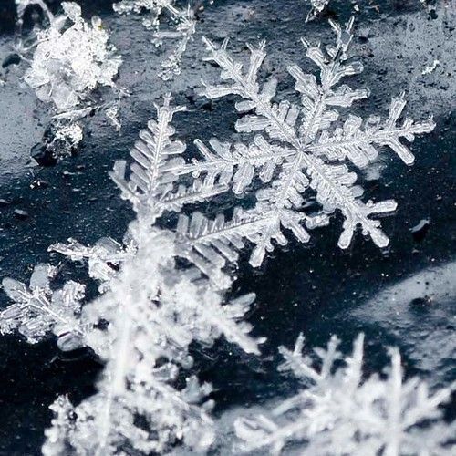 I find this close up photography of snowflakes very fascinating. They say that no two snowflakes are the same. The uniqueness of each snowflake, the endless possibilities and varieties of details really make us realize just how wonderful nature is.