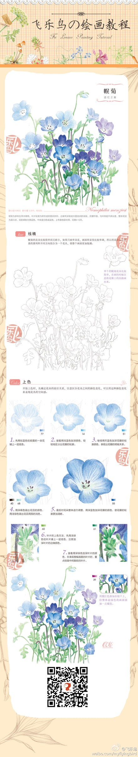 Drawing and painting small blue flowers drawing made easy
