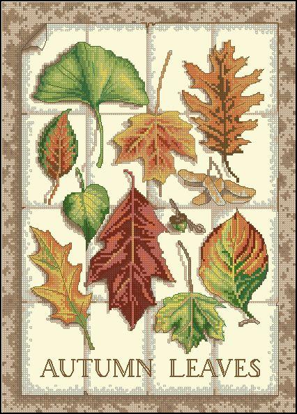 Gallery.ru / Фото #6 - Autumn Leaves - elypetrova