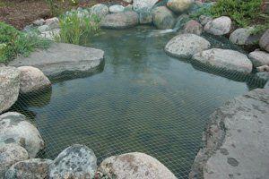 Aquascape 98002 Protective Pond Netting by Aquascape 28 x ...