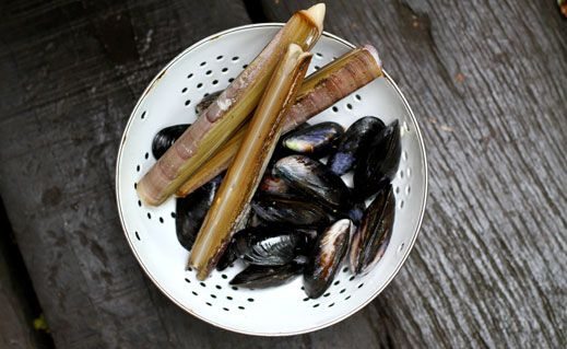 Shellfish approaching their peak as the water cools, the start of autumn's crops and a glut of late summer veg. Tom Hunt celebrates what we can enjoy this month.
