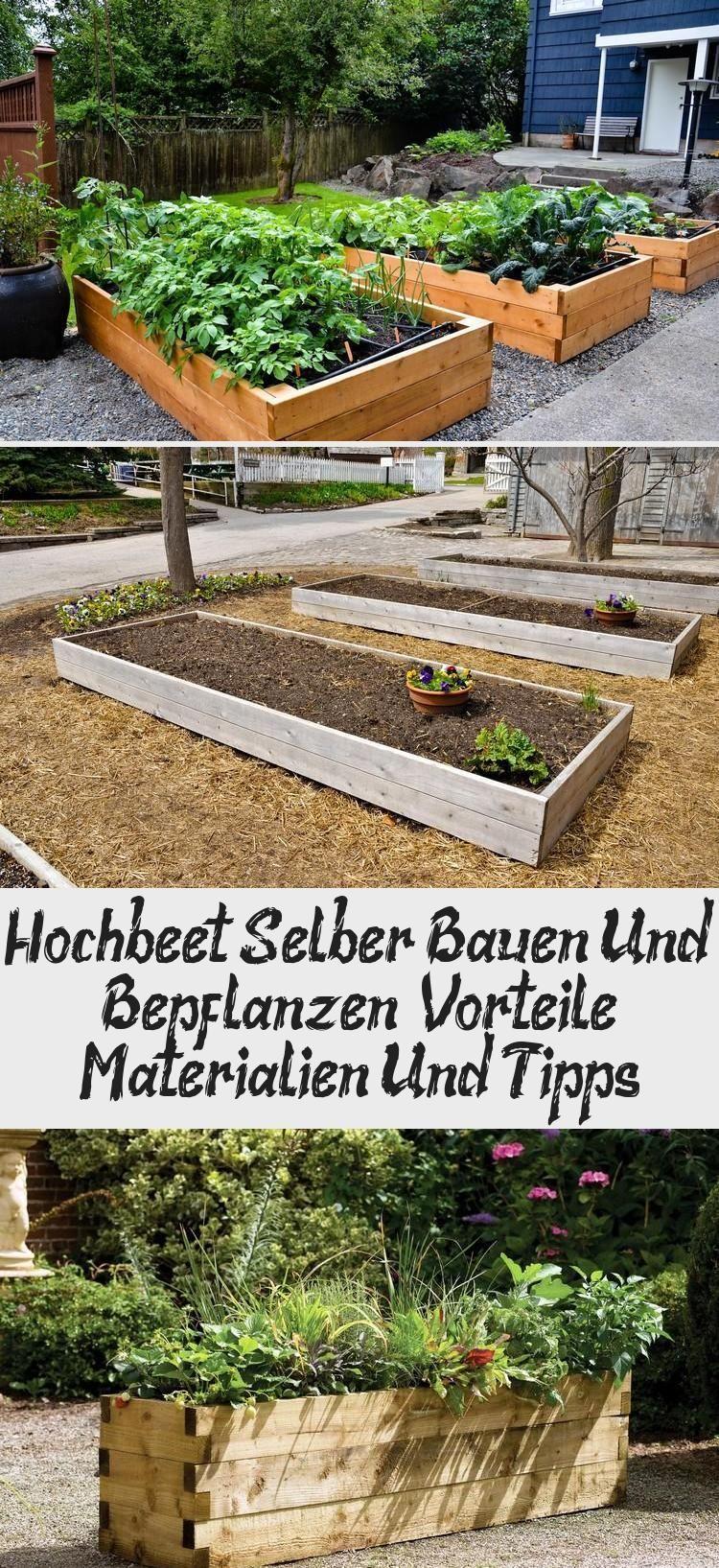 Hochbeet Selber Bauen Und Bepflanzen Vorteile Materialien Und Tipps Hochbeet Selber Bauen Hochbeet Bepflanzung
