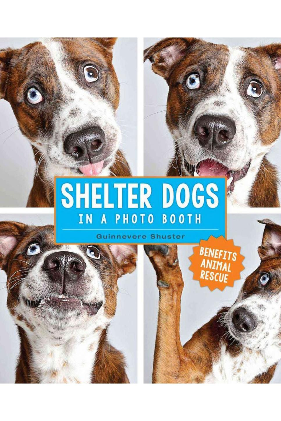 20 coffee table books about dogs wish list coffee table books rh pinterest com