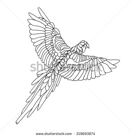 Macaw Parrot Coloring Page Birds Black White Hand Drawn Doodle Ethnic Patterned Vector