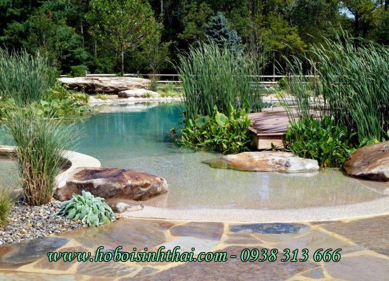 naturschwimmbecken hinterhof landschaften - Hinterhof Landschaften Bilder
