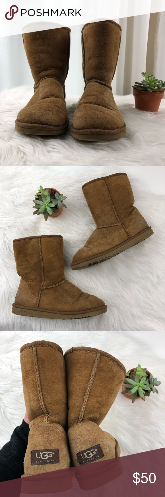 693f60d982c UGG   Classic Short 5825 Chestnut Boots   W6 Chestnut brown Ugg ...