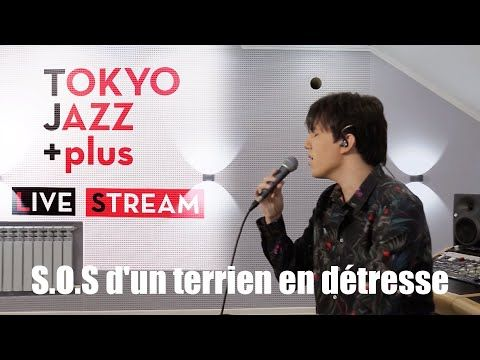 Dimash Kudaibergen S O S D Un Terrien En Détresse Tokyo Jazz Festival 2020 Youtube World Music Jazz Festival Classical Music