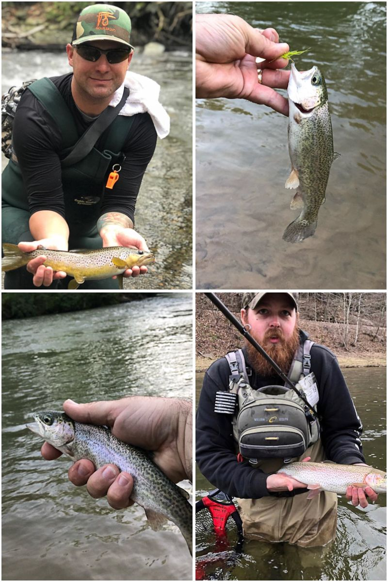 Use night crawlers, minnows or salmon for living bait to