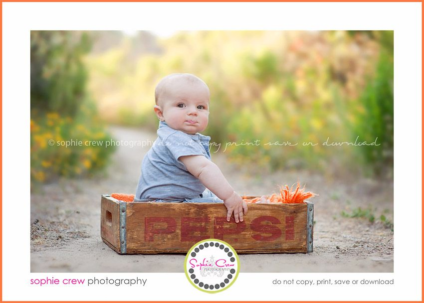San diego baby photographer sophie crew photography