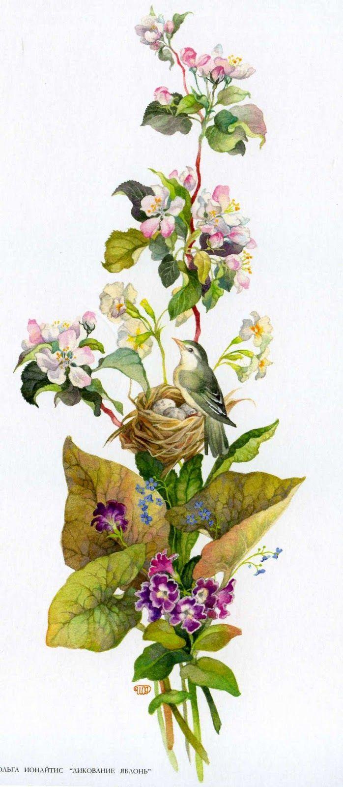 花」おしゃれまとめの人気アイデア|pinterest |大角綾子 | pinterest