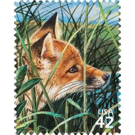 Red Fox Canvas Art Us Postal Service