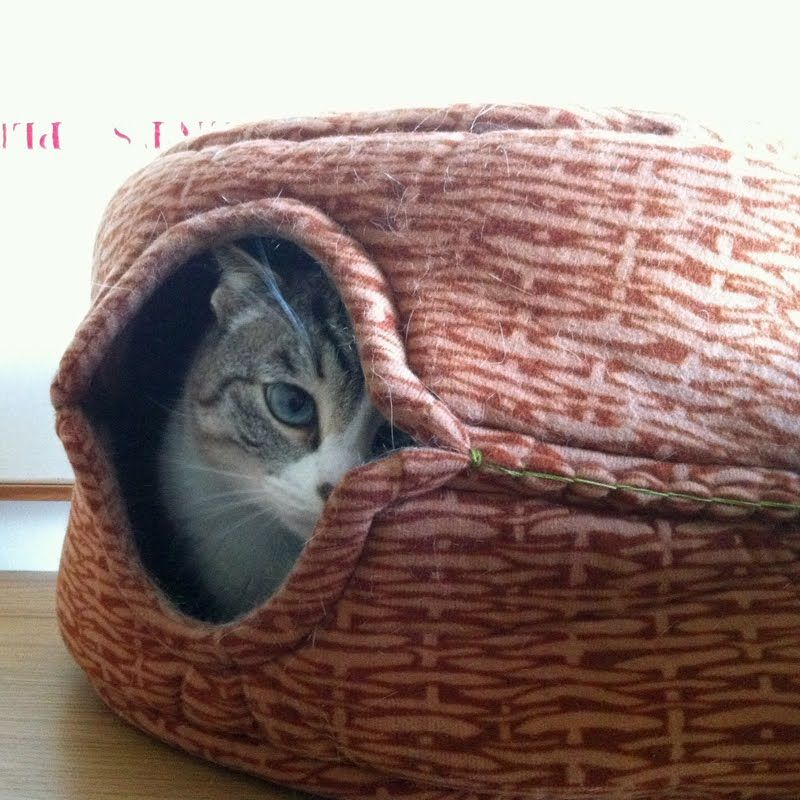 This is cool.Take two sturdy cat beds and stitch them together for a cat cave