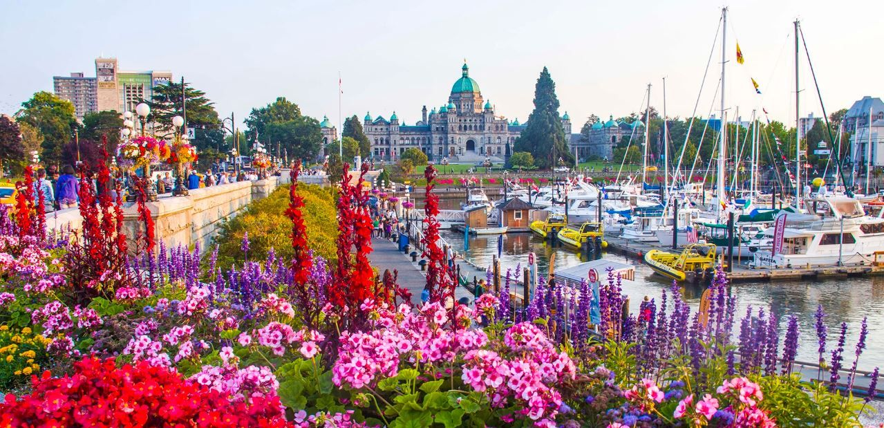 Vancouver travel blog — The fullest Vancouver city guide