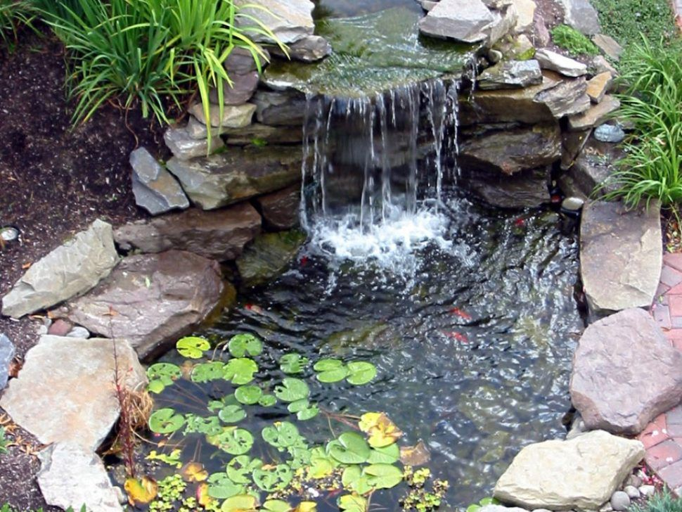 Backyard 61 cute water lilies and koi fish in modern for Modern pond waterfall