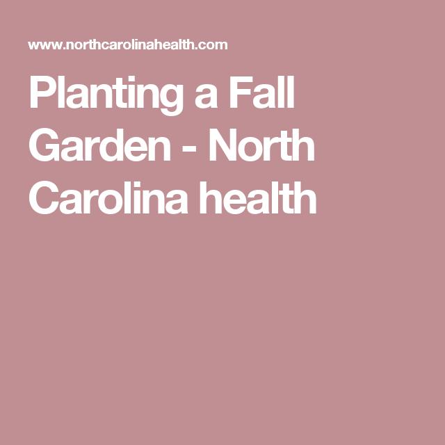 Secrets To A Thriving Fall Vegetable Garden In Wnc: Autumn Garden, Plants, Garden