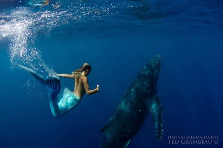 10 Photos of a Professional Mermaid, Because It\u0027s a Job Mermaid - marine biologist job description