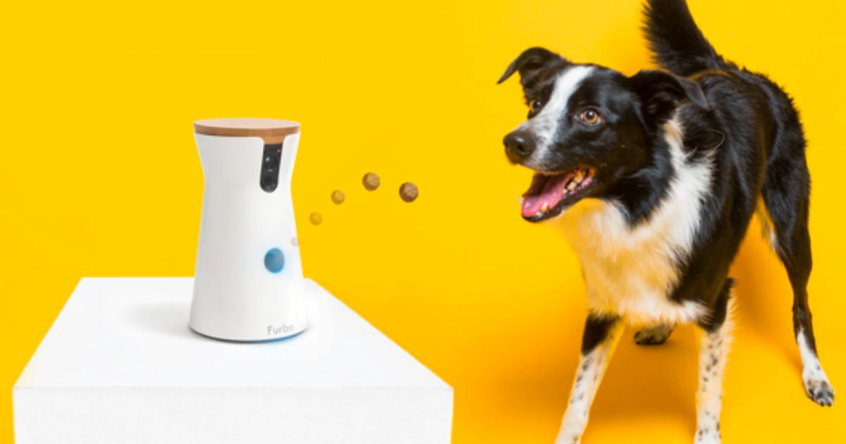 Furbo's treattossing dog camera is 20 off on Amazon