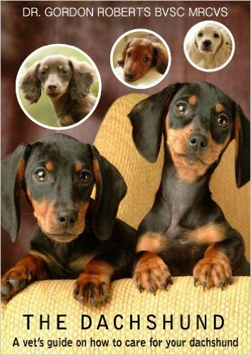 Pin By Belle Amore Dachshunds On Books About Dogs Dog Friends