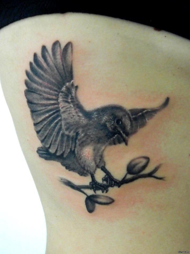 TATTOO OF THE DAY - TATUAGEM DO DIA - http://www.tattoos.pt