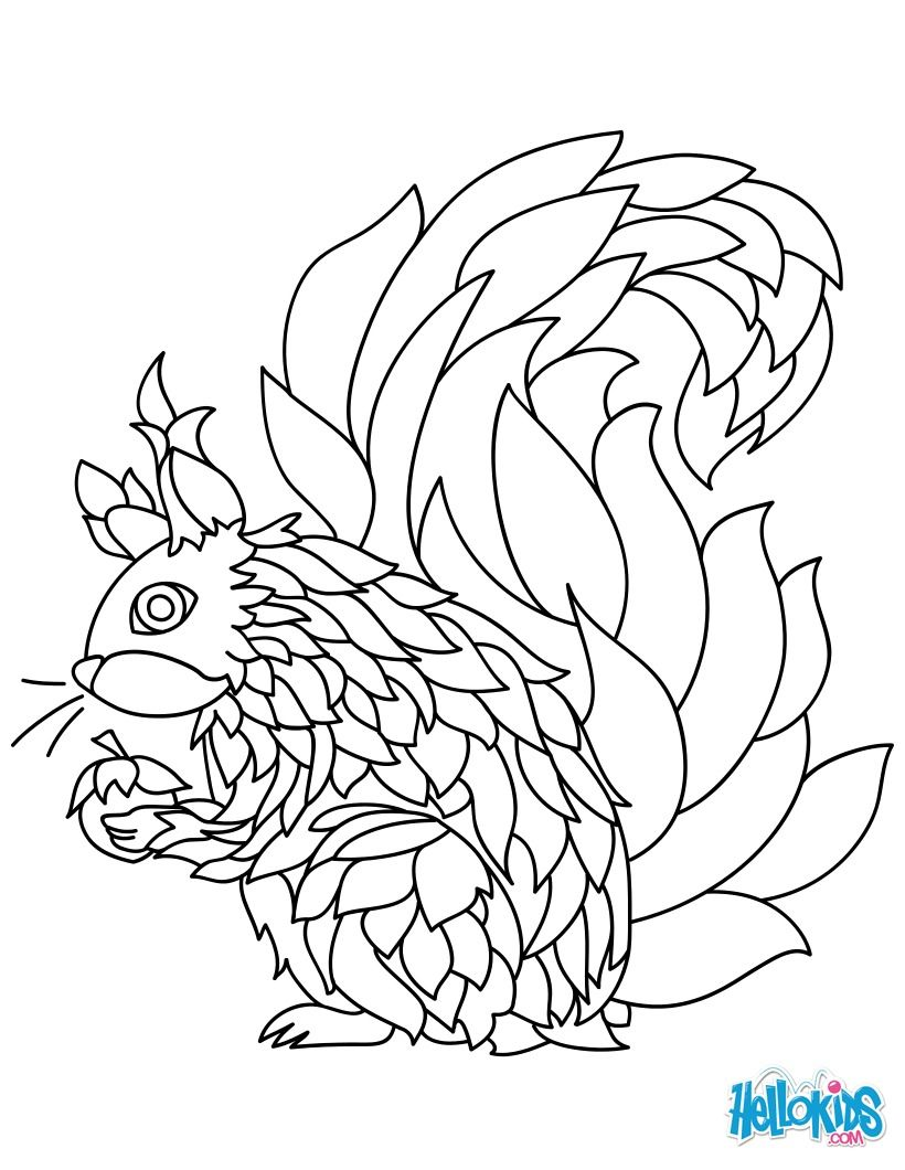 Look at this amazing squirrel mandala. Beautiful coloring page for ...