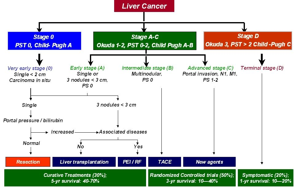 Primary Liver Cancer | Liver Cancer | Pinterest | Liver cancer
