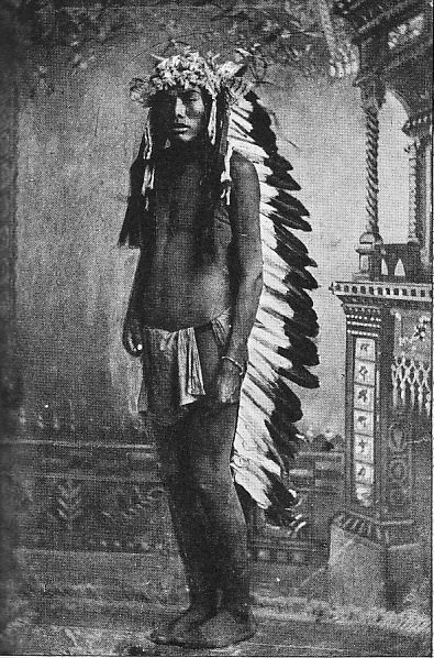 Unknown Sioux Brave