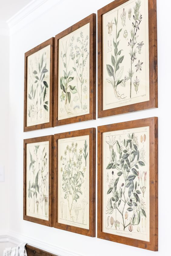 Botany Printable Art and a Wall Decor Hanging Trick | - A free download…
