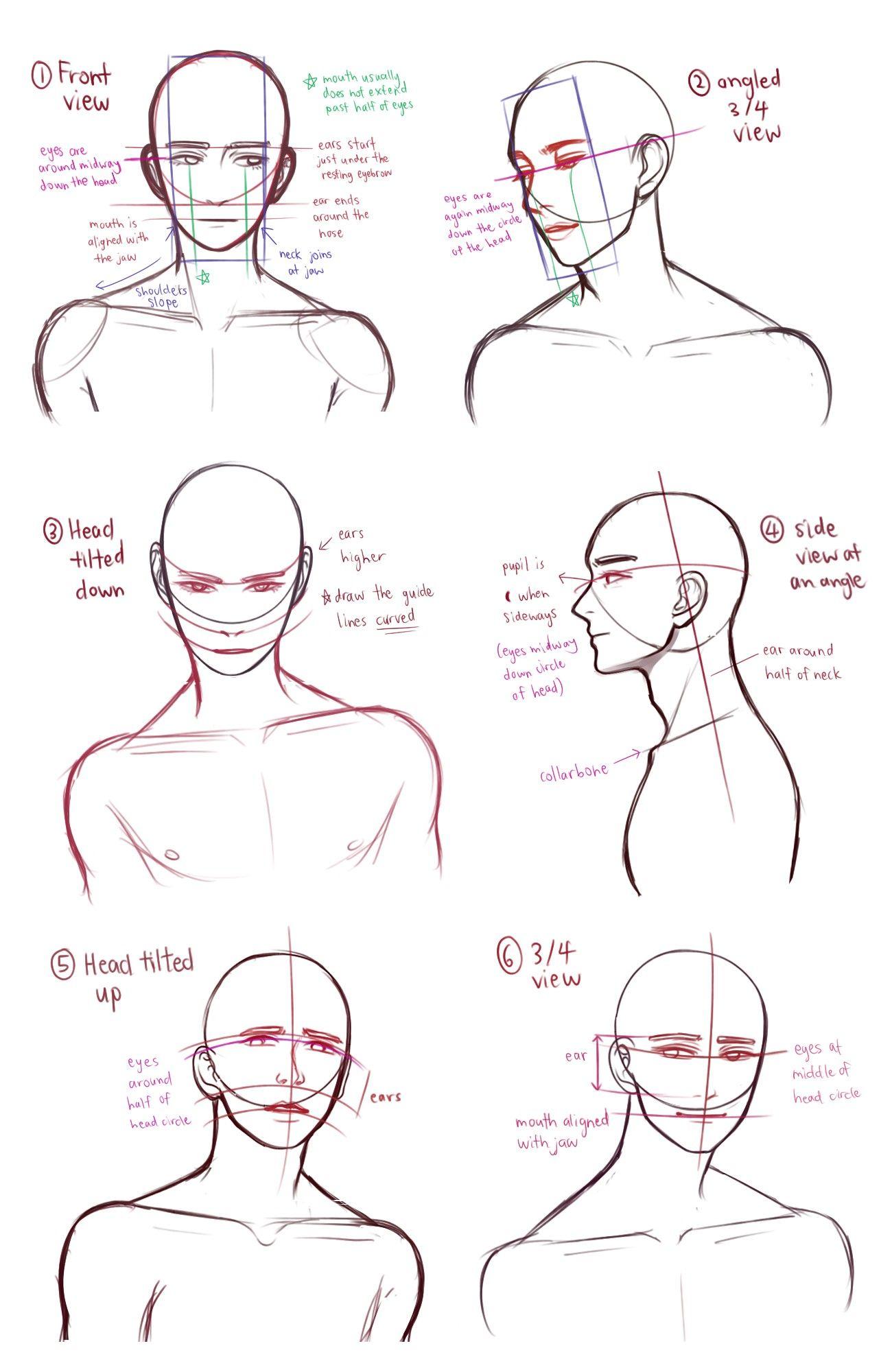 Pin de Max Bala en Anatomia | Pinterest | Diseño de personajes ...