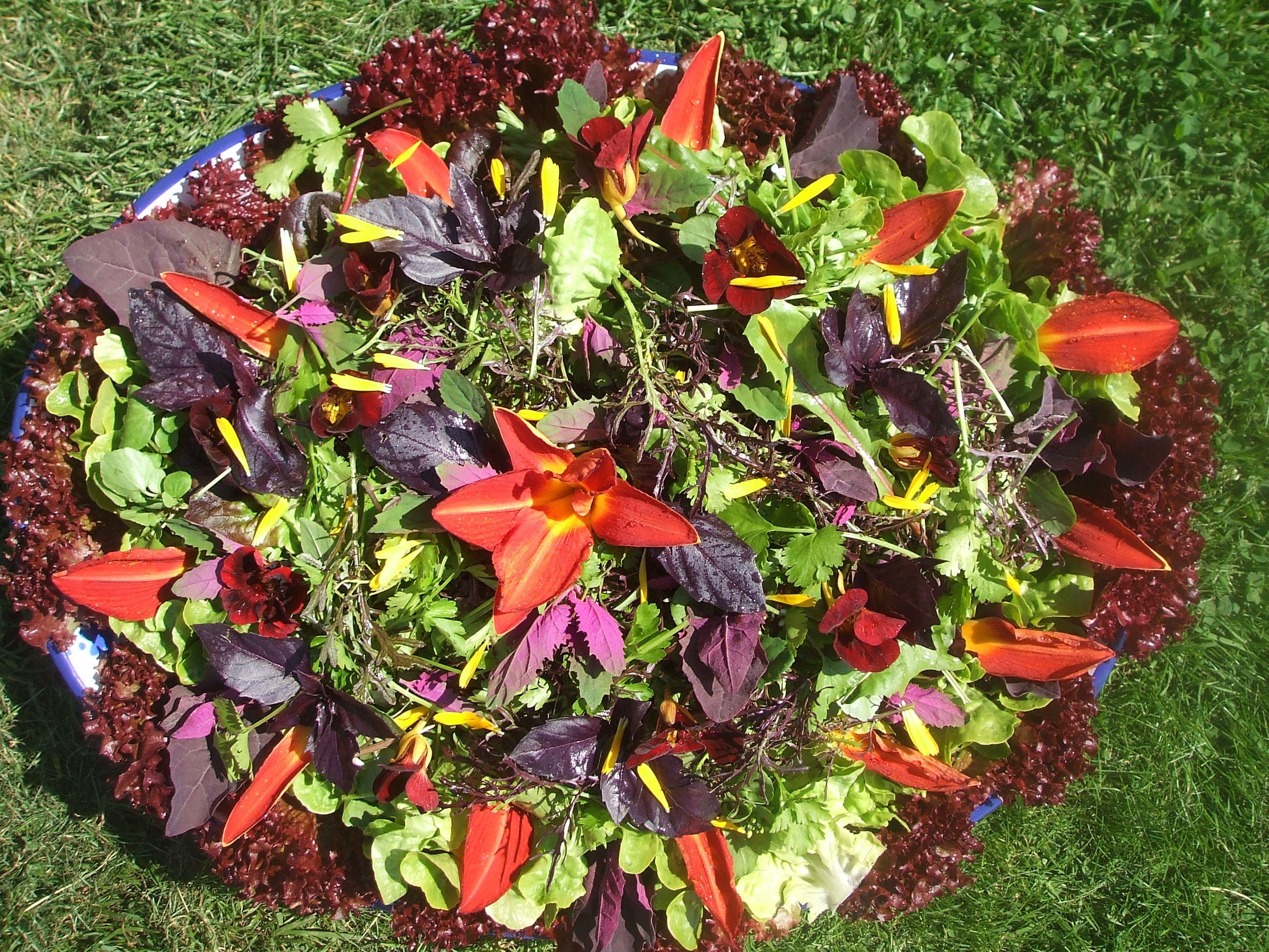 Ruby Wedding Flower Salad From Maddocks Farm Organics