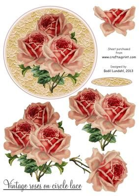 Roses Shoe And Lace Decoupage 1 x A4 Sheet
