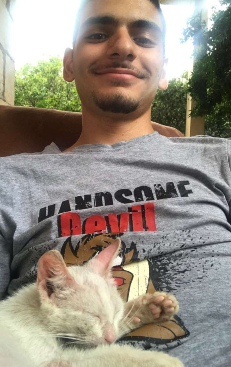 Guy Takes A Nap Outside Wakes Up With A Kitten On His Stomach Funny Cats And Dogs Cat Sleeping Cat Memes