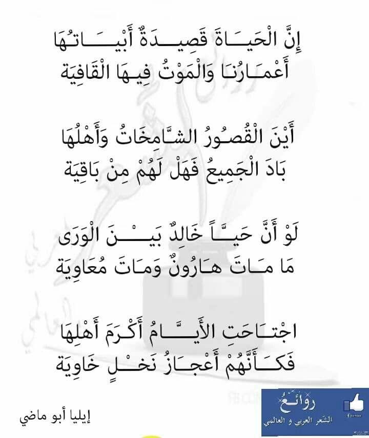 أين إيليا أبو ماضى Wise Quotes Spirit Quotes Words Quotes