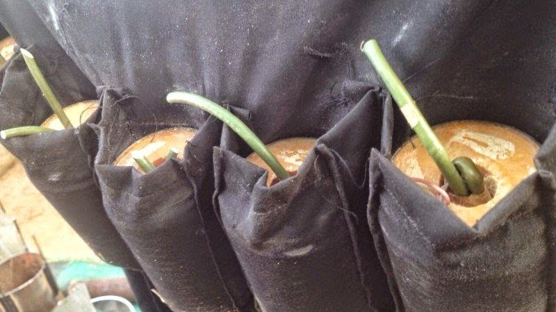 OLUWAGBEMIGAPOST: Nigerian military discover bomb making factory in ...