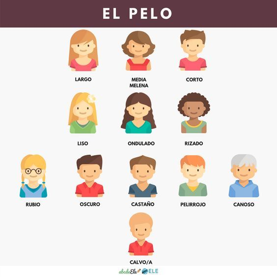 f76b24e75 Partes do corpo humano em Espanhol