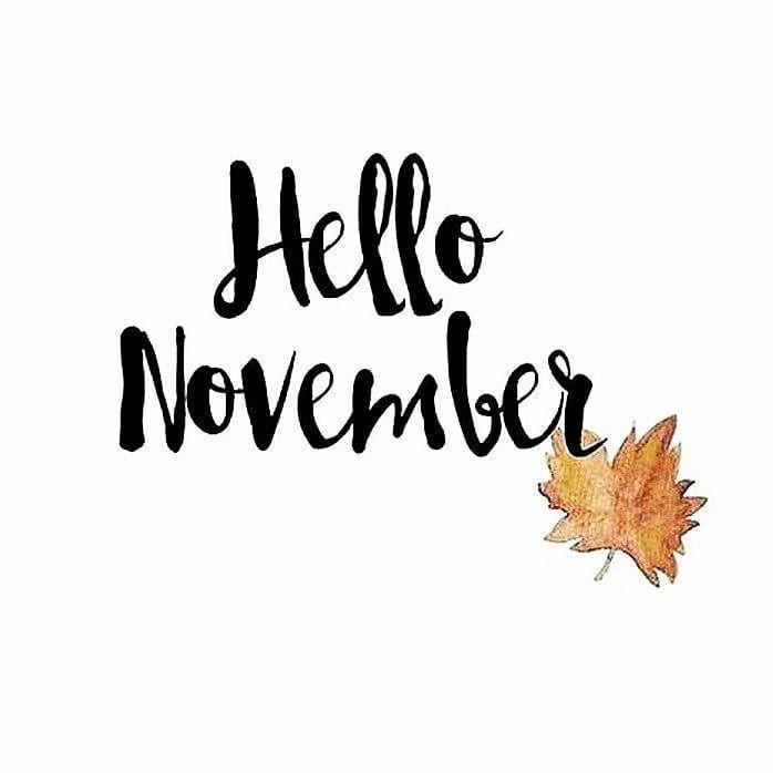 Hello November  New Month New Mindset New Goals . #lifetimeathletic #lifetimeaathleticnutrition #nut...