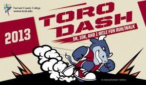 Toro Dash 2013