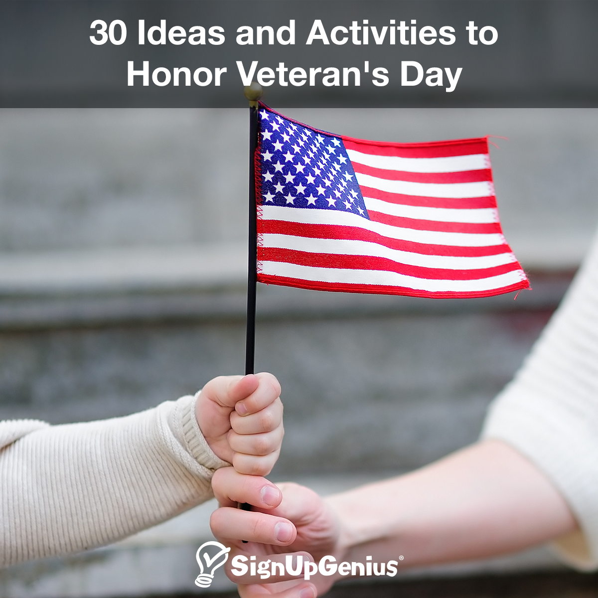 30 Activities and Ideas to Honor Veterans Day
