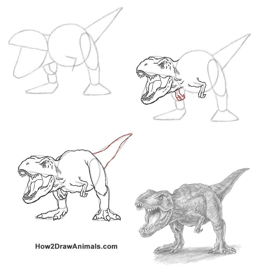 How to Draw a T. Rex Roaring VIDEO & StepbyStep Pictures