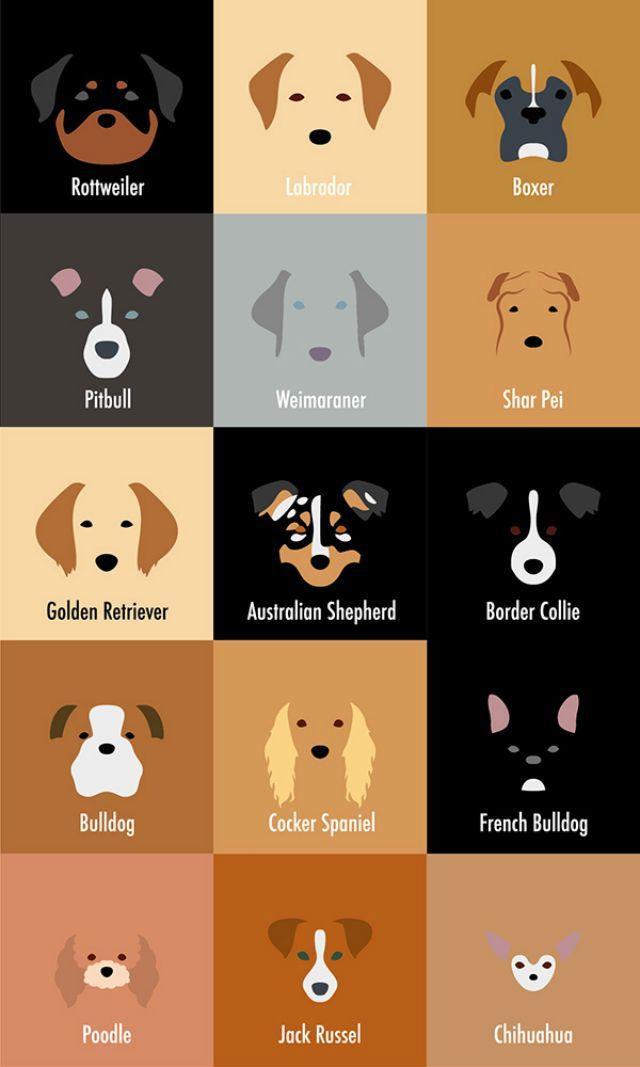 32 More Minimalist Dog Breed Illustrations So Spot On Even Your Dog Can T Deny It Razas De Perros Lenguaje De Los Perros Perros