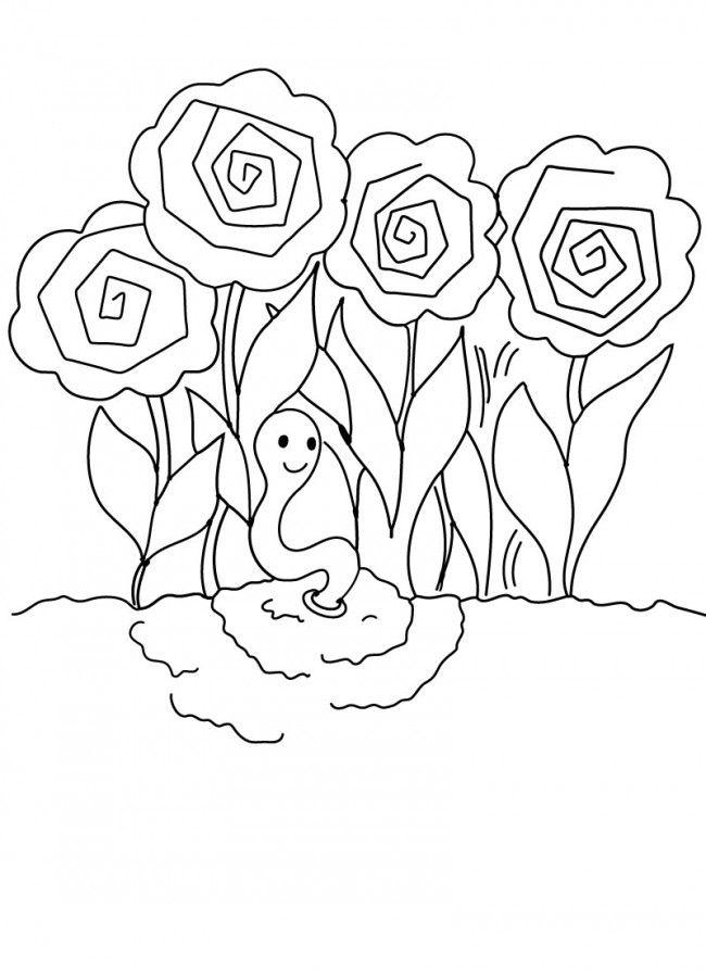 Peony Peonies Roses Garden Worm Earthworm