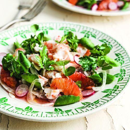 Fennel Salad   sheerluxe.com