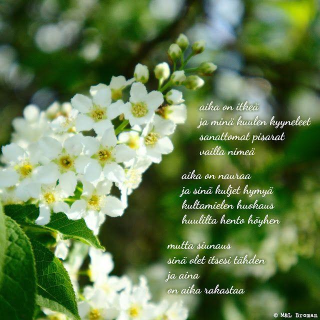 #runo #runoja #runous #runoilija #suomeksi #valokuva #valokuvaus #rakkaus #suru