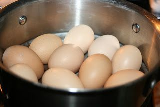 Challenged Survival: I will never boil another egg...steam them instead! 20 min. WORKS GREAT!!