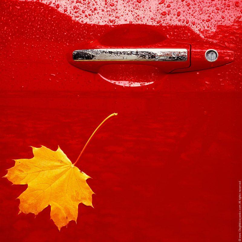Фотография Осенний этюд. Автор Олег Моисеенко.