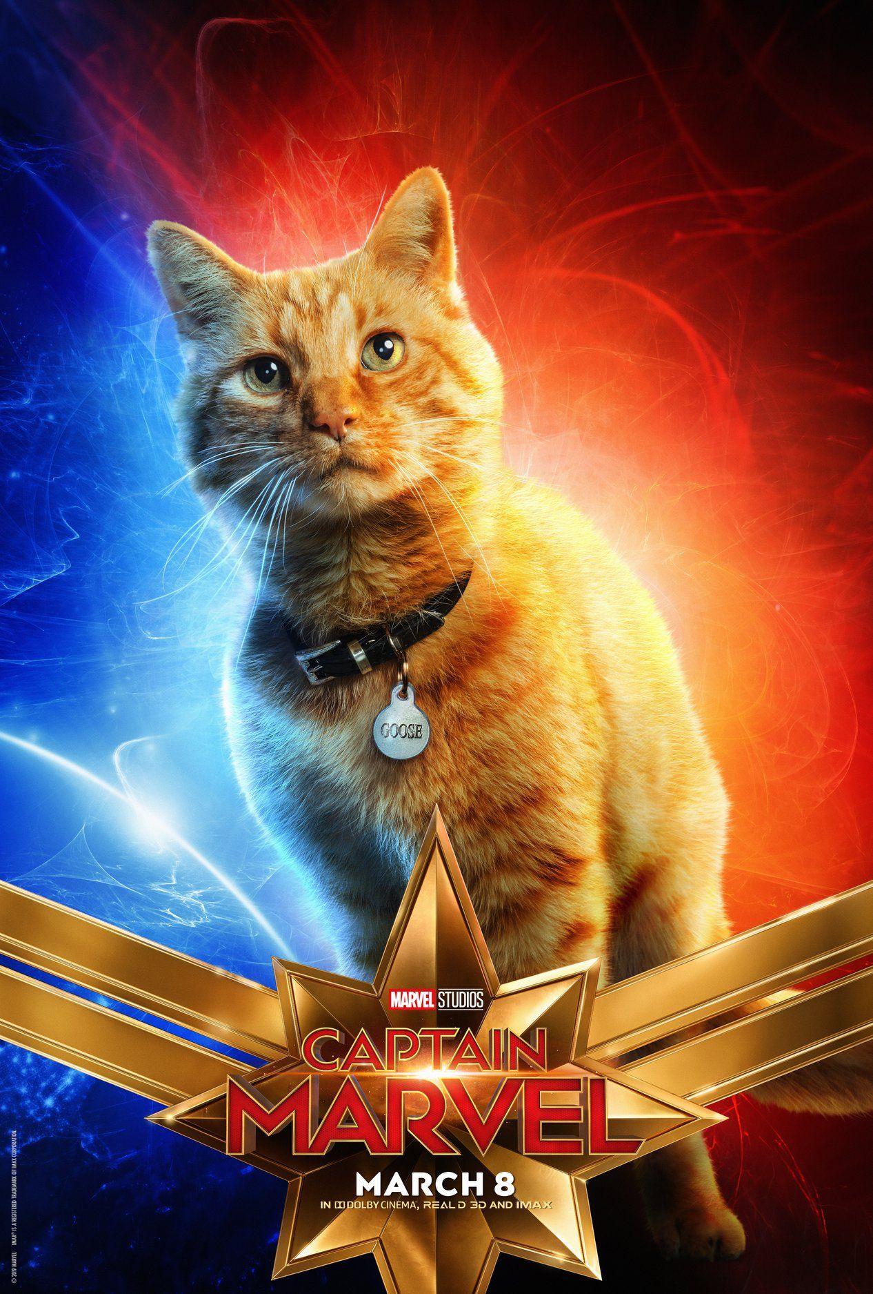 Captain Marvel: Posters de Personajes