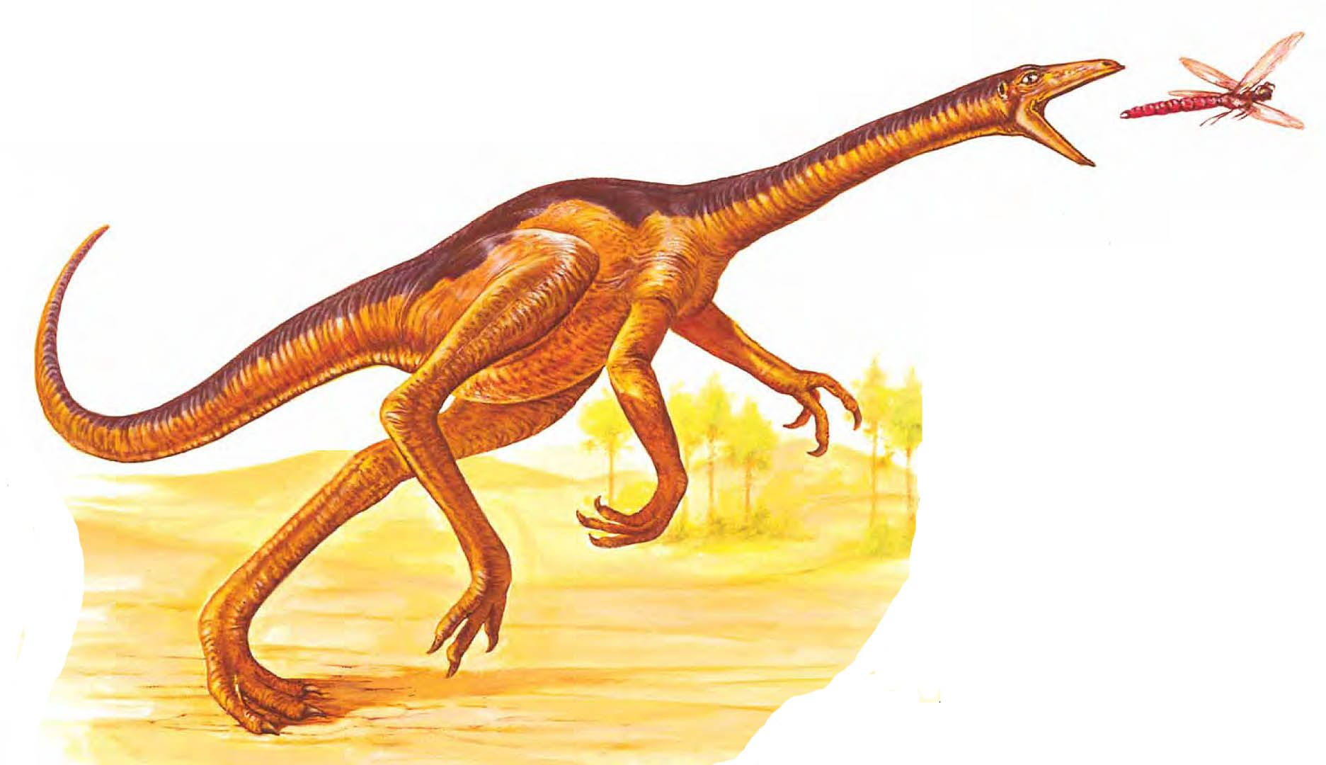 Struthiomimus Catching A Bug Animals Carnivores Bugs