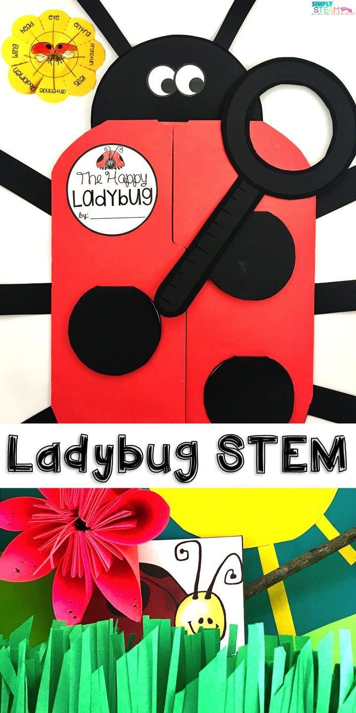 Ladybug Life Cycle Stem Amp Craft Ladybugs