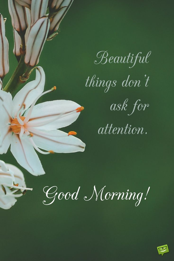 Fresh inspirational good morning quotes for the day beautiful beautiful things dont ask for attention good morning kristyandbryce Gallery