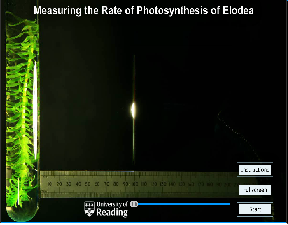 an experiment with photosynthesis Abstract photosynthesis in plants is affected by the intensity of the light the plant is exposed to for this experiment, dcpip was added to cuvettes with spinach chloroplasts, which were.