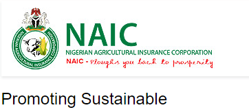 Nnaic Recruitment 2020 This Article Is Here To Guide You On How